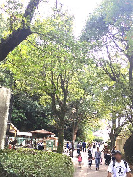 大牟田市動物園で「めんたま」をつくる